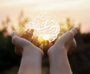 hands holding digital picture of a brain